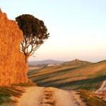 Italie_Toscane_Landscape