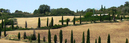 Italie_Toscane