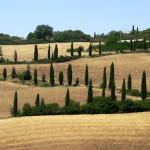 Italie_Toscane_Landscape1